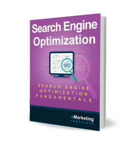 3D_Search-Engine-Optimization_eMarketing-Institute_v1